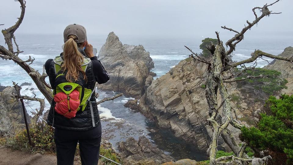 Research at Point Lobos