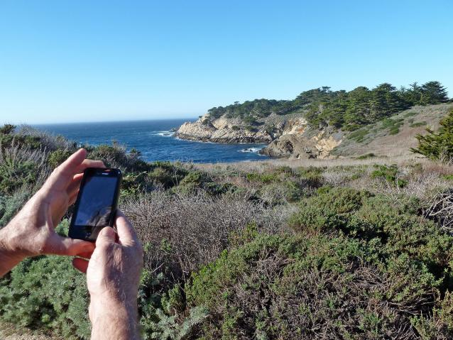 photo of person using cell phone at Point Lobos