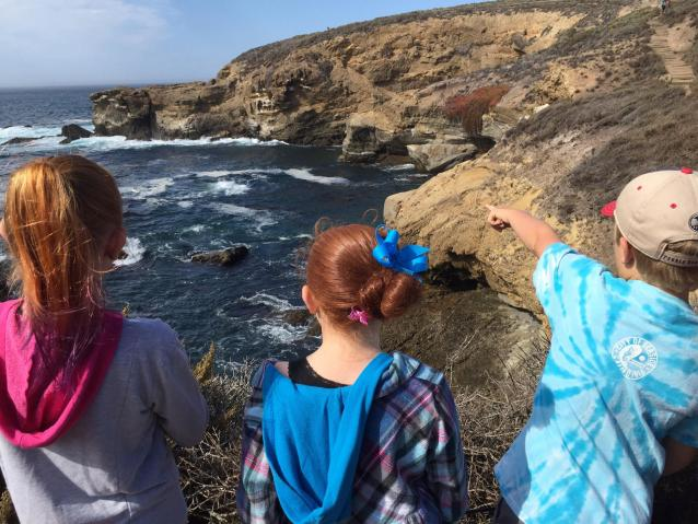 photo of students visiting Point Lobos