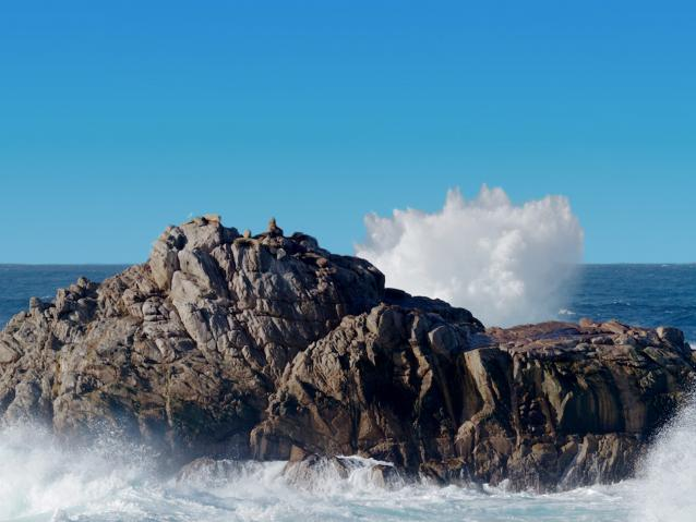 photo of rock formation at Point Lobos
