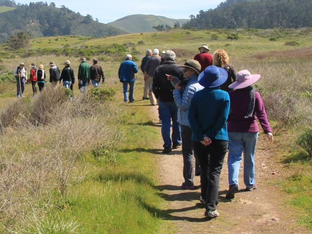 photo of a guided tour at Point Lobos