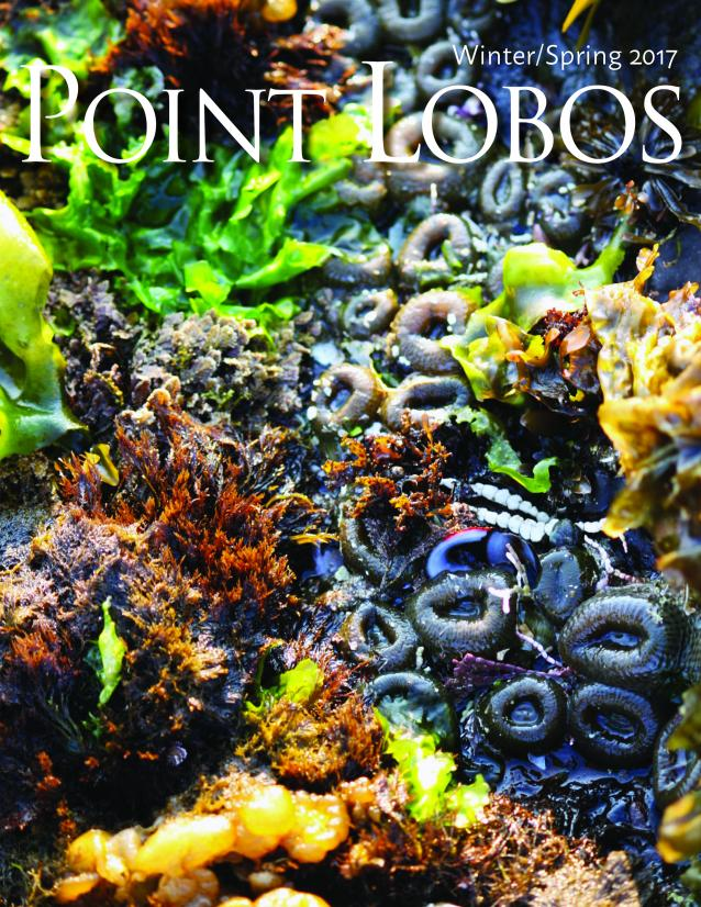 Cover of Winter/Spring 2017 Point Lobos Magazine