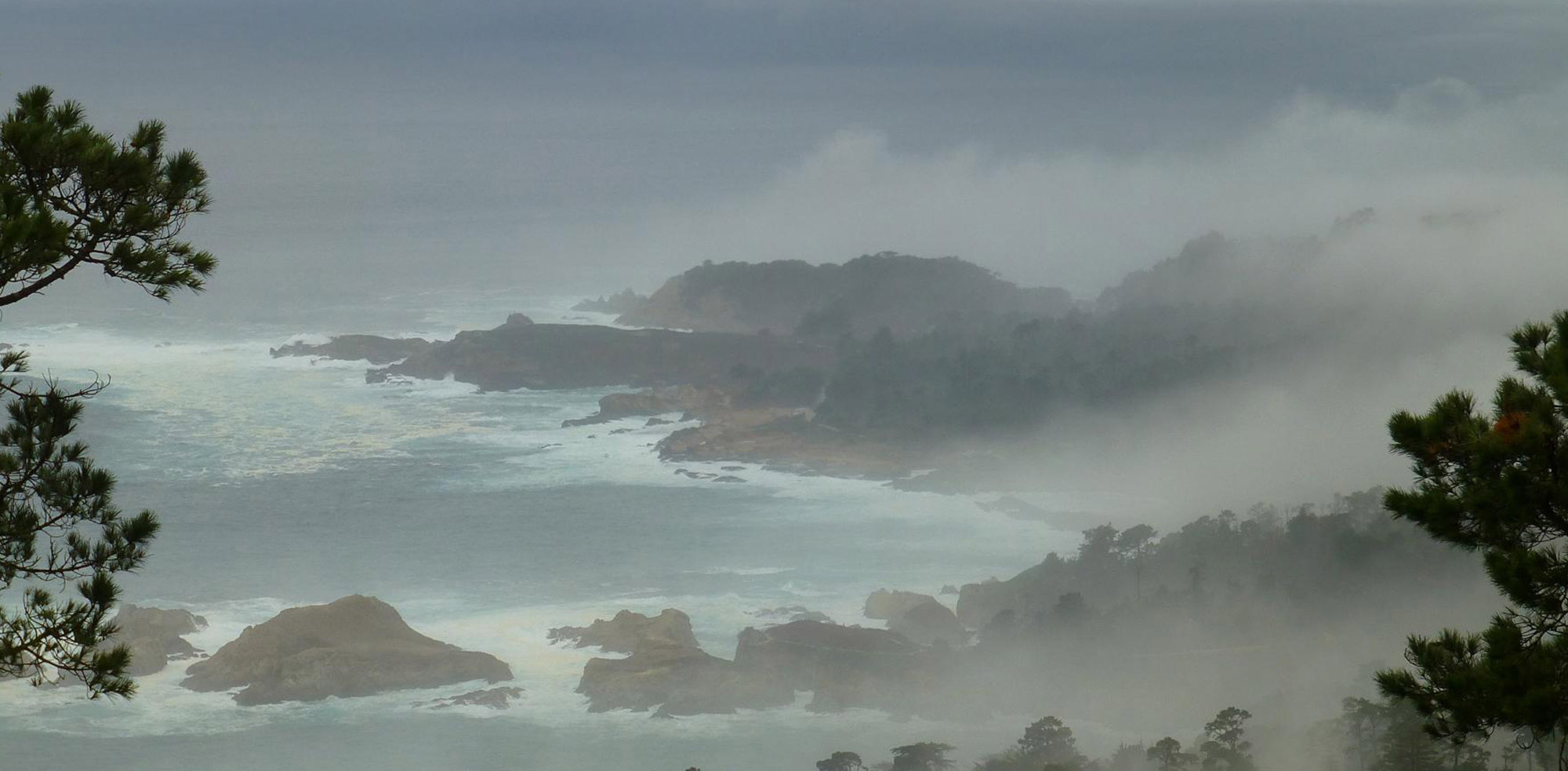 photo of coastal fog at Point Lobos