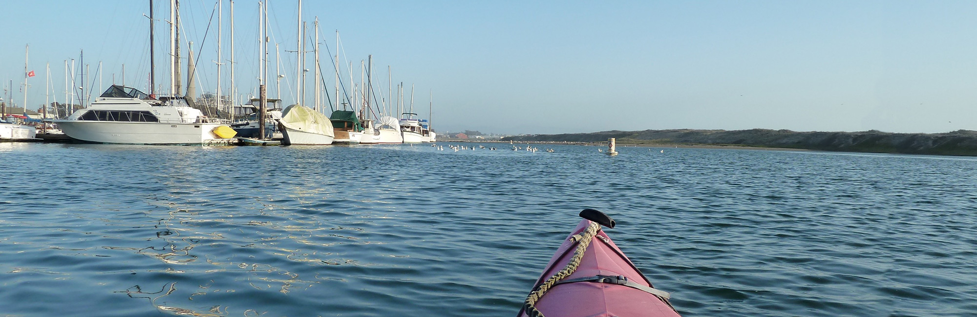 photo of a kayak in elkhorn slough